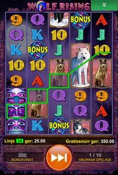 Wolf Rising bonusspel