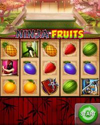 Ninja Fruits mobil